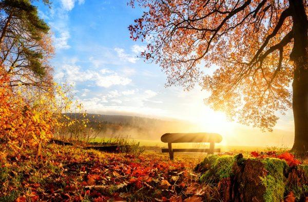 【2020】秋はいつから?涼しくなって過ごしやすくなる時期は10月頃!